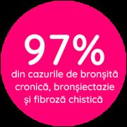 bulina2